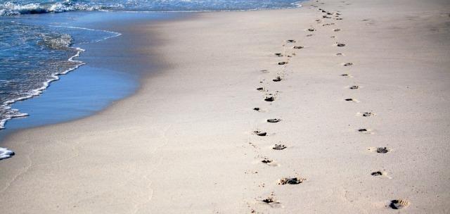footprints-600743_960_720.jpg