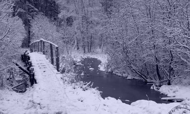 old_bridge_in_winter_by_deingel-d37ygpm.jpg